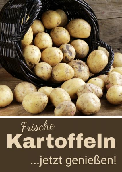 Kartoffelbanner | Werbebanner | Kostenlose Druckvorlage | Online selbst gestalten |