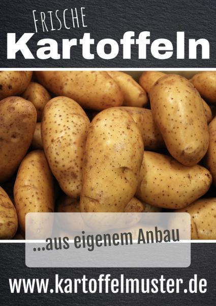Kartoffelbanner | Werbebanner | Plane | PVC-Banner | Frische Kartoffeln |